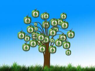 Disegno stilizzato di un albero stagliato su sfondo azzurro. L'albero ha il simbolo dei dollari al posto dei frutti