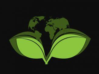 Immagine, grafica digitale, sfondo nero, 2 foglie verdi in primo piano sostengono un mappamondo verde, articolo sulla salute pubblica planetaria