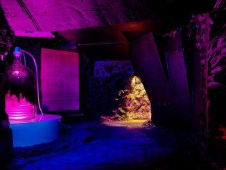 foto, interno, colori, sala buia con luci viola e blu, dalla mostra New Impressions of Raymond Roussel, Parigi 2013