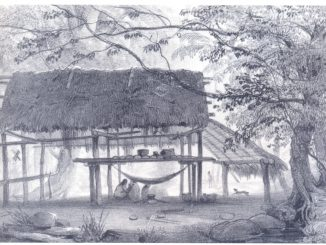 The picture consist in a hand-drawn wooden hut in the middle of the Amazon forest, with some people inside it