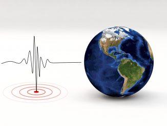 nella foto a colori si vede a destra un mappamondo e a sinistra un grafico elettrocardiogramma