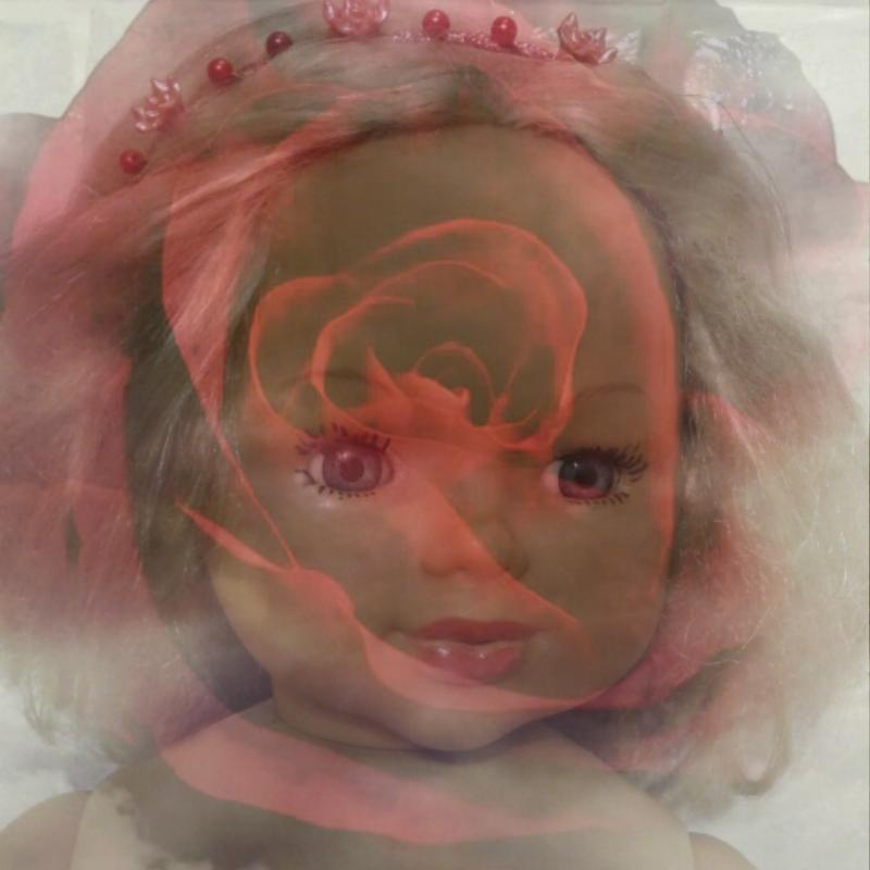 Vitaldo Conte, bambola e rosa in dissolvenza raccapricciante