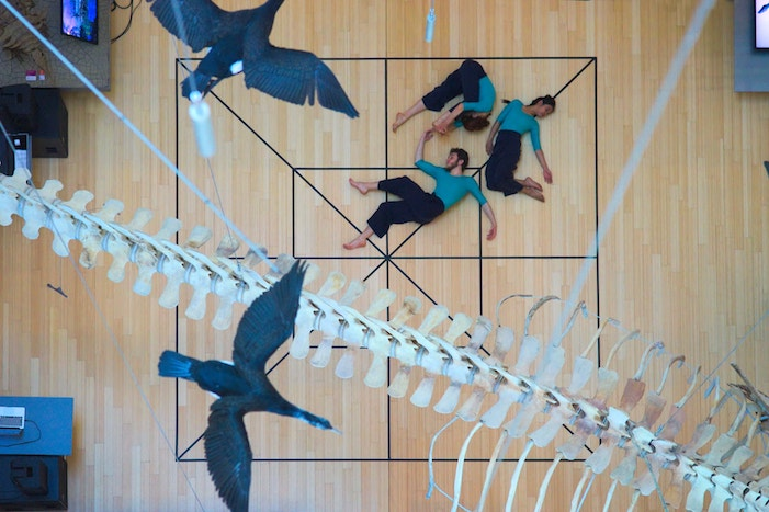 the picture, shows three people seen from above . the three people wears blue shirt and black trousers and appear to be sleeping on a wooden parquet with a black lattice. Above the three people there are two balck birds and a dinosuar skeleton's tail