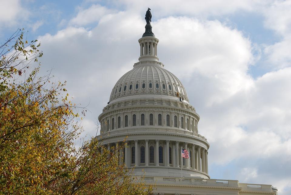 nella fotog: a Capitol Hill, la cupola del parlamento americano a Washington con la bandiera americana che sventola